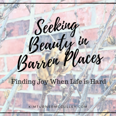 Seeking Beauty in Barren Places | Finding Joy When Life is Hard