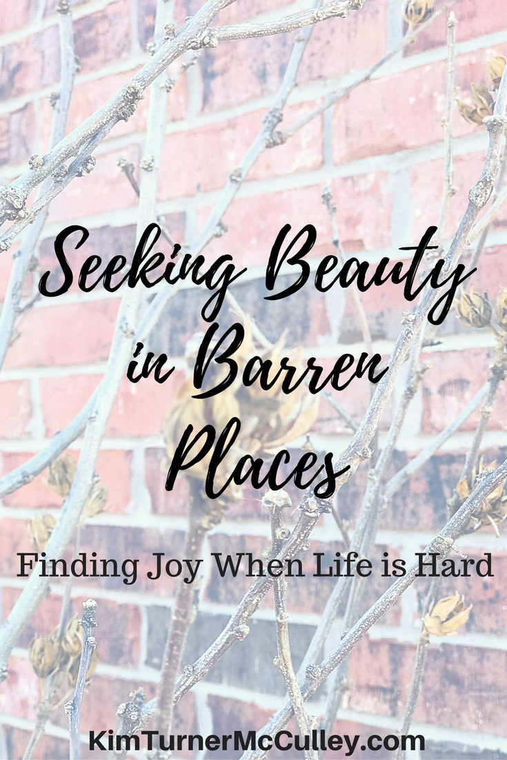 Seeking Beauty in Barren Places | Finding Joy When Life is Hard KimTurnerMcCulley.com